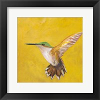 Framed Sweet Hummingbird II