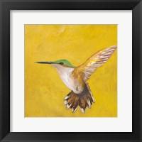 Framed Sweet Hummingbird II