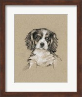 Framed Breed Sketches III