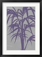 Framed Chromatic Palms V