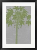 Framed Chromatic Palms IX