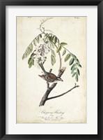 Delicate Bird and Botanical I Framed Print