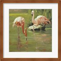 Framed Flamingo II
