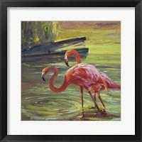Framed Flamingo III
