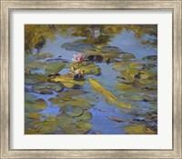 Framed Koi & Lilies II