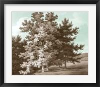 Serene Trees I Framed Print