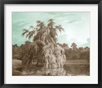 Serene Trees V Framed Print