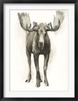Majestic Wildlife I Framed Print