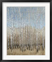 Dusty Blue Birches I Framed Print