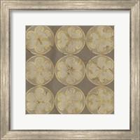Framed Golden Trellis IX