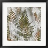 Shenandoah Grove I Framed Print