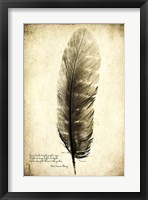 Framed Feather on the Wind I