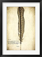 Feather on the Wind V Framed Print