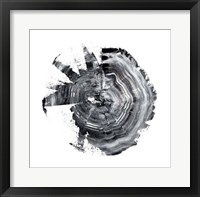 Tree Ring Abstract II Framed Print