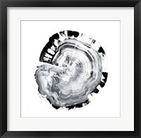 Tree Ring Abstract III Framed Print