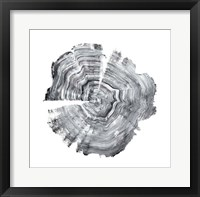 Tree Ring Abstract IV Framed Print