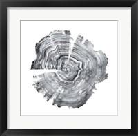 Framed Tree Ring Abstract IV