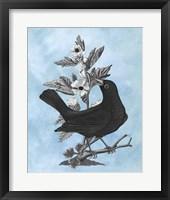 Framed Bird on Blue II