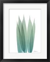 Radiant Bamboo Leaf 1 Framed Print