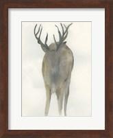 Framed Solo Deer