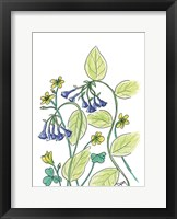 Framed Virginia Bluebells