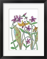Framed Wild Blue Phlox