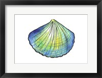 Framed Underwater Shell 1