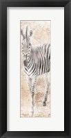 African Traveling  Animals Two Framed Print