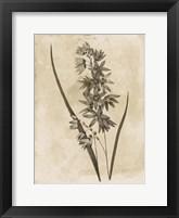 Floral Earthtone Framed Print