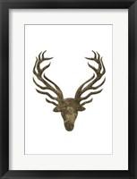 Aged Deer Framed Print