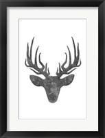 Black And White Aged Deer Mate Framed Print