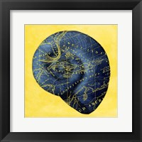 Map Shel l2 Y Indigo Framed Print
