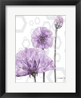 Framed Poppy Arch Rect 1