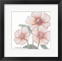 Framed Pink Poppies 1