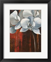 Pearl Orchid I Framed Print