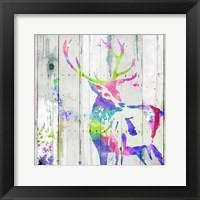 Deer Gaze Colorful Framed Print