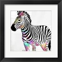 Zebra Head Colorful Framed Print