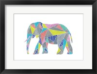 Colorpoly Elly Framed Print