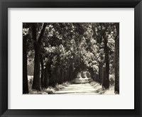 Framed Country Road 2