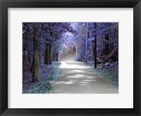 Framed Violet Glow