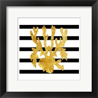 Golden Coral Framed Print