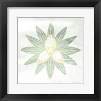 Textured Flower Framed Print