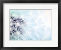Wishes Blue Framed Print