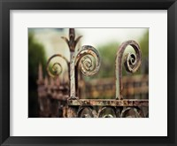 Framed Fence Mint