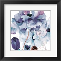 Framed Aromatic Botanics 2