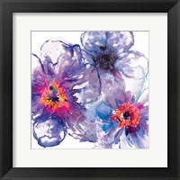 Framed Infusion 1