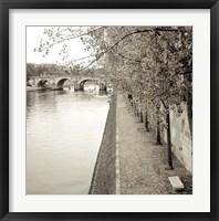 Framed Promenade Seine II