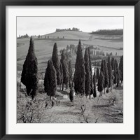 Tuscany IV Framed Print