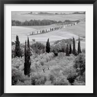 Framed Tuscany VI