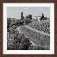 Framed Tuscany V